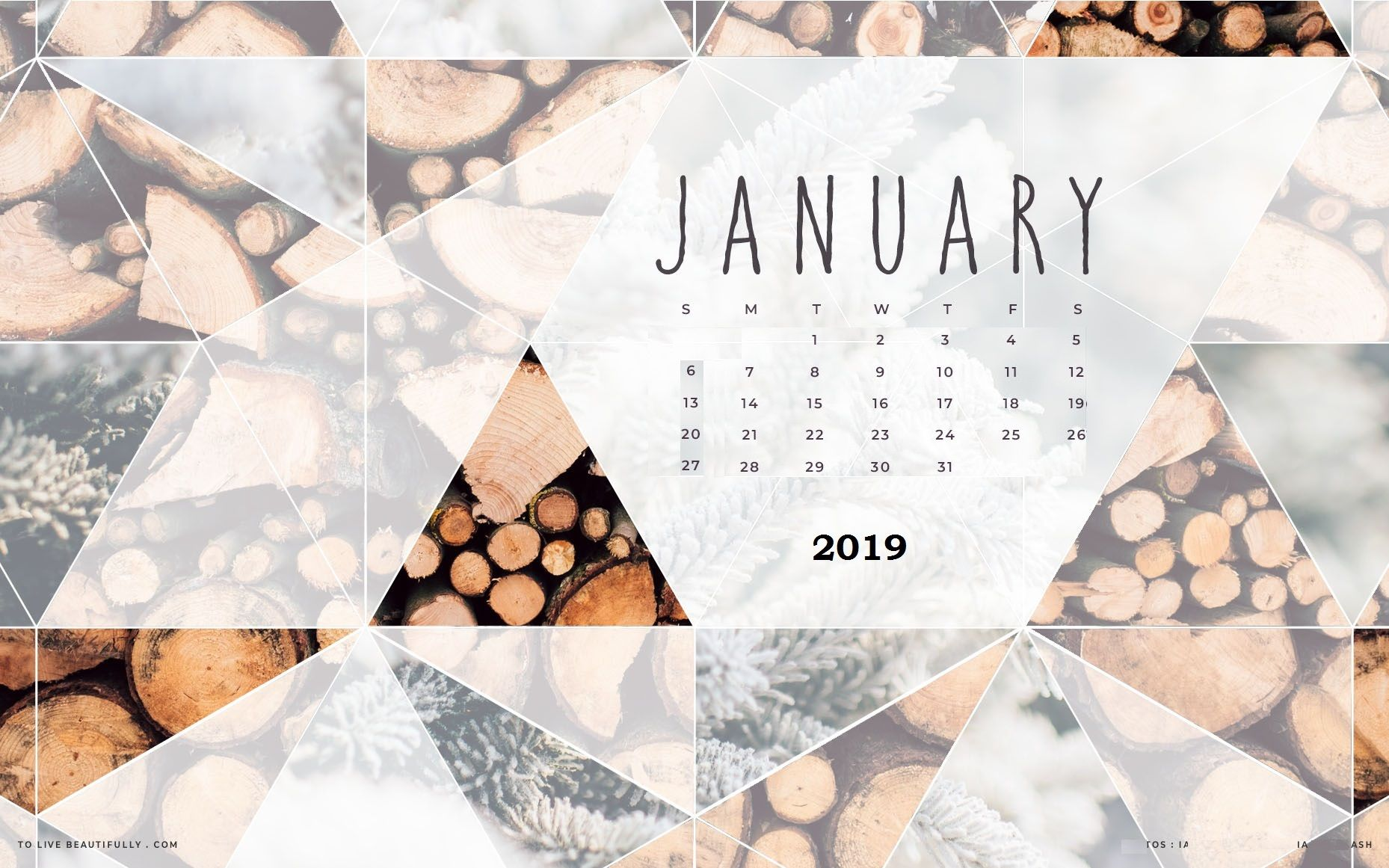 Cute January 2019 Calendar Background Wallpaper Cute January 2019 Calendar Wall Floral Flower Designs