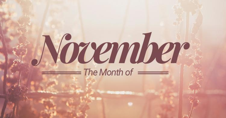 November – 11th month of the year Photo