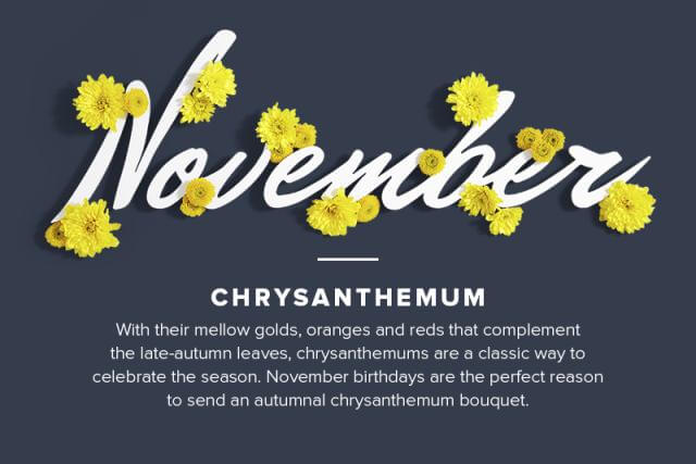 November Birth Flower Meaning