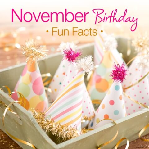 November Birthday Baby Images
