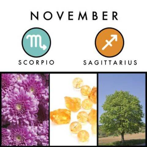 November Birthstone and Birth Flower