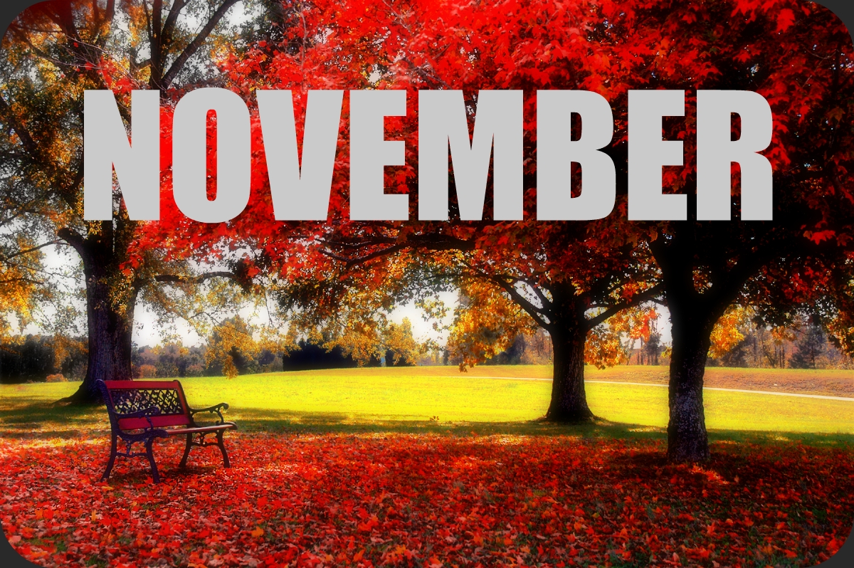 November Photos HD Download