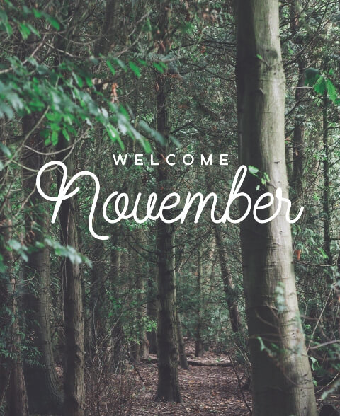 Welcome November Free Images