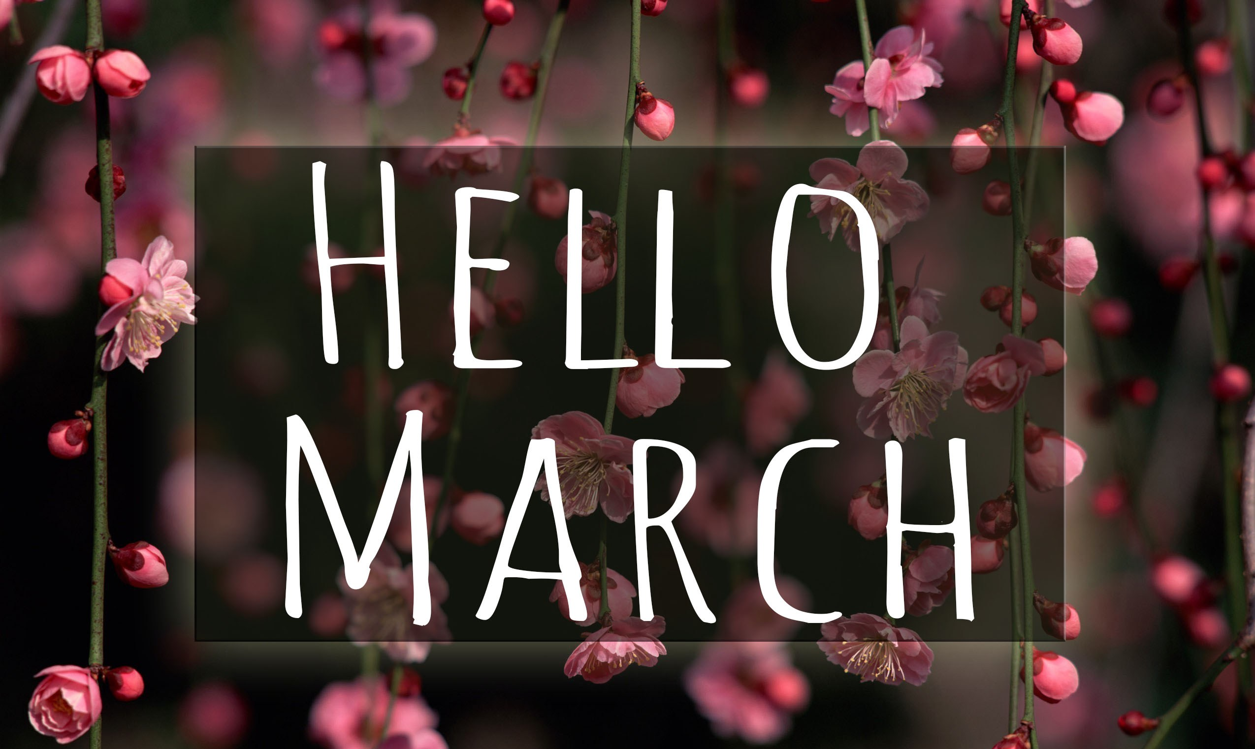 Hello March Facebook Profile Cover
