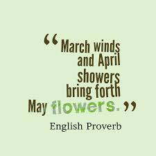 April Showers Bring May Flowers Spring Quote Spring